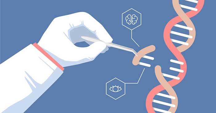 Γνωρίζεις το επάγγελμα της Γενετικής Μηχανικής;